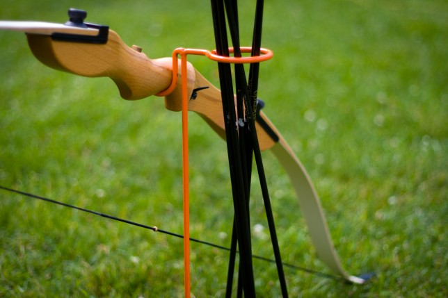 A bow and arrows