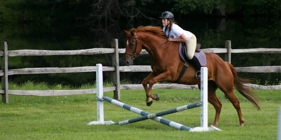 A camper taking her horse over a jump